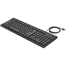 HP Keyboard 100